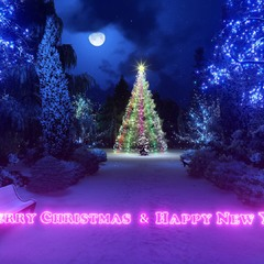 MERRY CHRISTMAS & HAPPY NEW YEAR 2