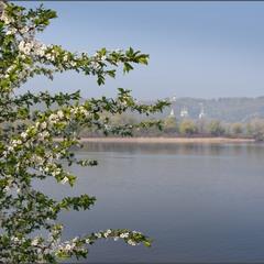 Київська весна.
