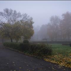 В тумане осени.