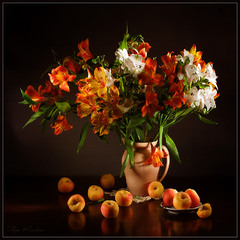 Альстремерия и абрикосы