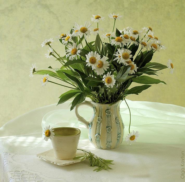 Ромашки в вазе фото красивые