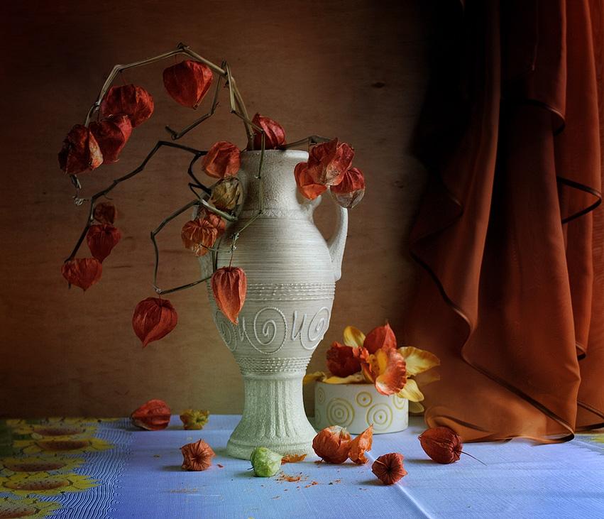 ваза с физалисами картинки нашем
