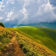 Стежками  Карпатських гір