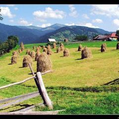 Жизнь среди Карпатских гор