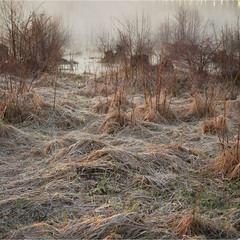 Ирдынские болота