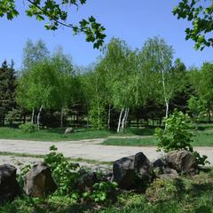 Уголки забытого парка...