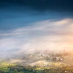 Тумана тихая лазурь