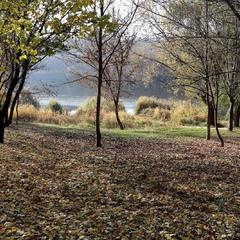 Осінній парк над Бугом...