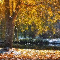 Зустріч осені з зимою...