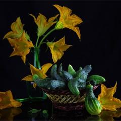 Огірковий з гарбузовим цвітом