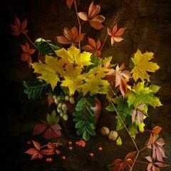 Кольорова осінь