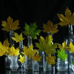 Хор жовтневих листочків