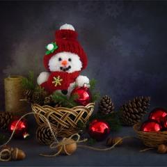 Історії новорічних сніговичків