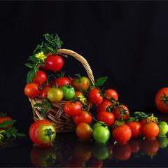 Повзучі помідорчики ))