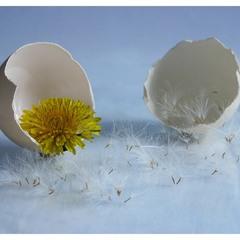 Яєшня по-весняному