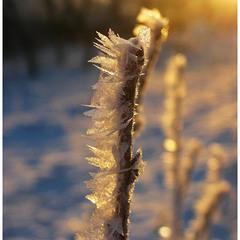 Тепло про холодне