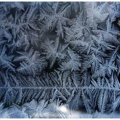 Frosty Art