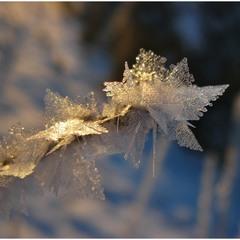 Чарівна паличка Зими-чаклунки