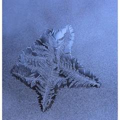 Холодна зірка