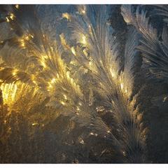 Glass, Ice & Winter Sunrise