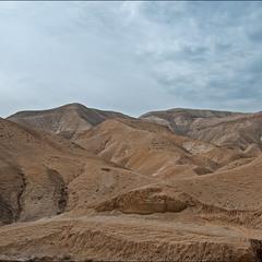 Пустыня Негев. Израиль (из серии)