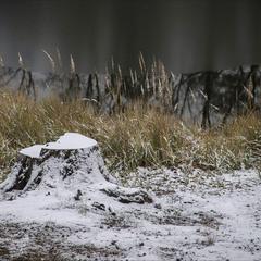 Зима наступает (2)