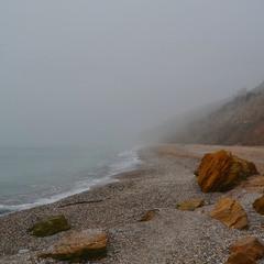 Туманні береги