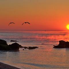 Море парує на сході сонця