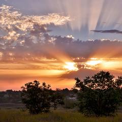 Cxiд сонця над селом