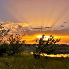 На сході сонця