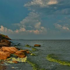 Зелене Чорне море
