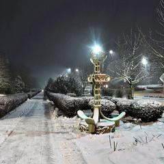 Снег выпал только в январе
