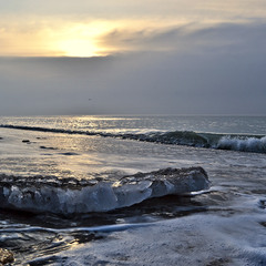 Remnants of Ice on the Coast