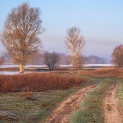 Дорога в весеннее утро