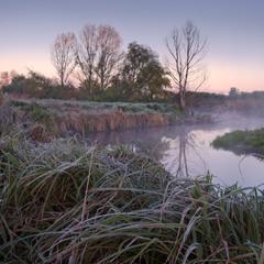 Утренняя тишина у реки