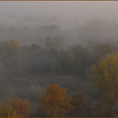 Киевские туманы в октябре