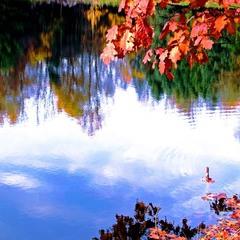 Осенник зарисовки на Нью Йоркщине.