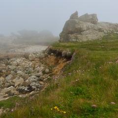 Прибрежный туман