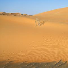 Песчаный прилив
