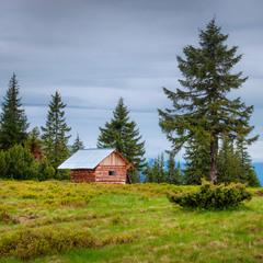 У лесной опушки домик небольшой...