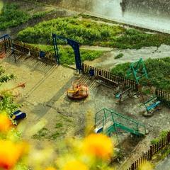 Под проливным дождем лета.