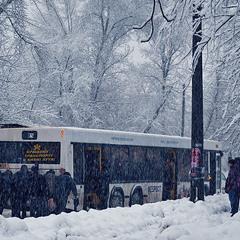 Кращому транспорту в Києві бути!