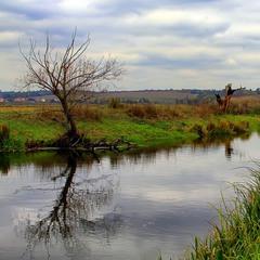 Где-то на болотах у Баскервиль-Холла