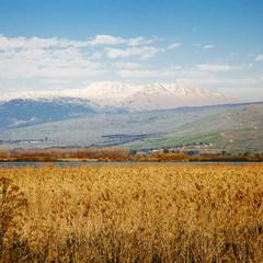 Снежная гора Хермон.