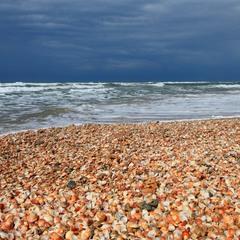 Ракушечное море.