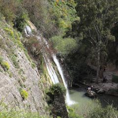 У водопада.
