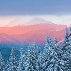 Рожеві гори.