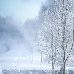 Зимові картини...