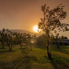 У подножия горы Олимп ,Греция