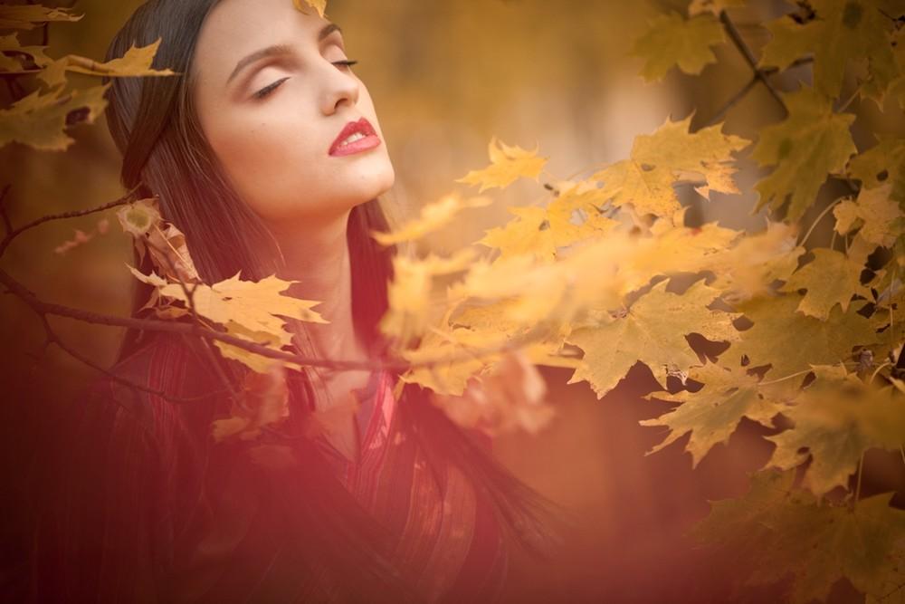 Фотография золотой закат в лаванде / Ян Волянский